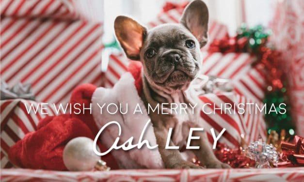 【平成最後のクリスマス】We wish you a Merry Christmas!!