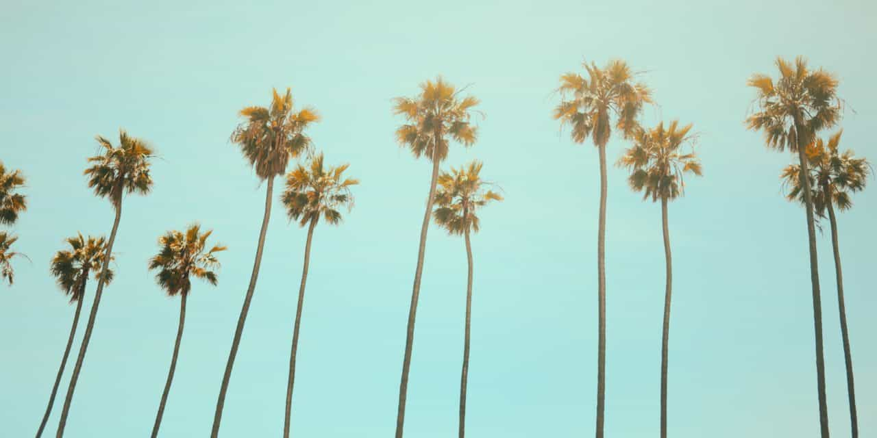 【LA旅】 Los Angeles in California カリフォルニア男3人旅  Trip about food and cluture