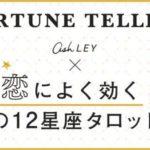 【更新!aoiの12星座タロット占い】あなたの [ 2/20 ~ 3/6 ] の運勢は?!