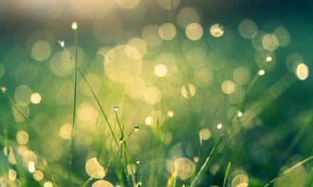 【シャイニージェル】春こそアースカラーネイルで柔らかく。